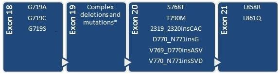 EGFR Mutation